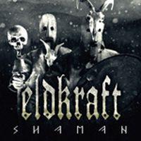 Eldkraft-Shaman
